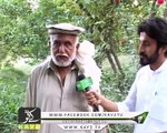 District Dairy Kohat ( 20-10-2017 )