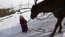 Cette petite fille balade son cheval Mustang dans la neige