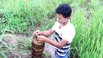 Net Fishing at pailin Province - Khmer Cast Net Fishing -Cambodia Traditional Fishing ( Part 101)