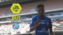 But Nuno DA COSTA (23ème) / OGC Nice - RC Strasbourg Alsace - (1-2) - (OGCN-RCSA) / 2017-18