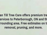 tree service in Peterborough
