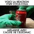 Il mélange du Coca à de l'acide gastrique pour voir ce qu'il se passe dans notre estomac