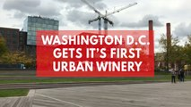 District winery becomes Washington DC's first 'urban winery'