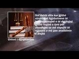 Ora News – Reagime të ashpra për vrasjen e gjyqtarit Hafizi