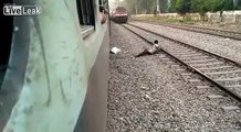 Train Suicider Aborting Suicide