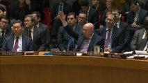 Armes chimiques en Syrie : la Russie impose son veto