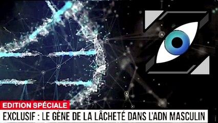 [Zap Télé] Le gène de la lâcheté détecté dans l'ADN masculin ! (25/10/17)