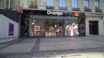Orange Graduate