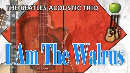 The Beatles Acoustic Trio - I Am The Walrus