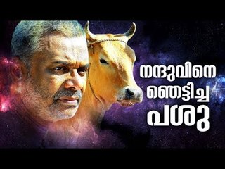 Malayalam Movie | Pasu | The Making Video | MD Sukumaran | Nandhu |