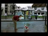 Video - humour - gag chien