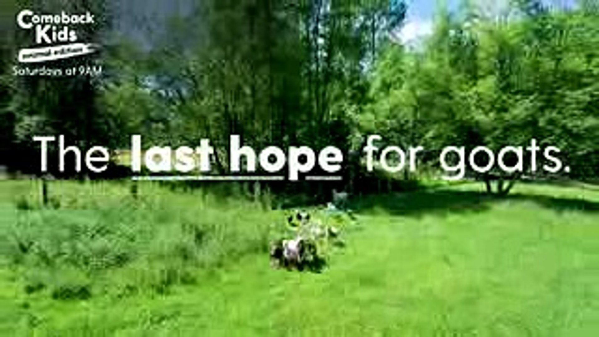 The Last Hope for Goats Episode 4 TRAILER  The Dodo