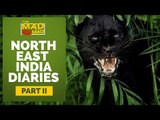 The MAD NoMAD Ep# 002 Black Panther Attacks in Darjeeling ! Experience Darjeeling like never before