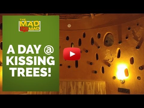 004 A DAY AT KISSING TREES   The MAD NoMAD EP. 022   WIDE LENS