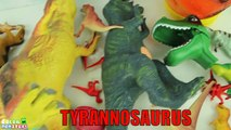 20 Tyrannosaurus Toys Box - Dinosaur Collection Of Tyrannosaurus Rex- T Rex Toys For Kids 티라노 장난감 상자