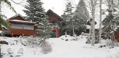 Snowfall in Minnesota Blankets Forest in White