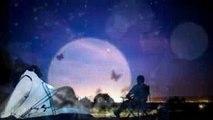 ♪伴奏♪夜空の花「ガイアの夜明け」エンディング