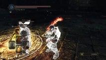 DARK SOULS™ II: Scholar of the First Sin - Heavy Team