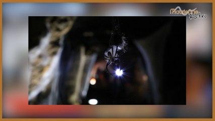 Maurienne Rétro #44 Hallow'mine