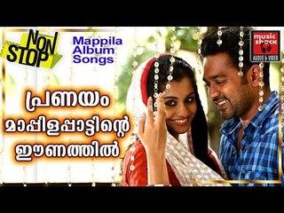 പ്രണയം മാപ്പിളപ്പാട്ടിന്റെ ഈണത്തിൽ # Malayalam Mappila Songs 2017 # Mappila Pattukal # Mappila Songs