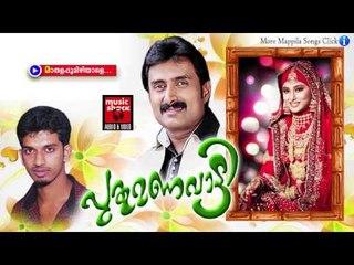 മാതളപ്പൂമിഴിയാളെ | Mappila Pattukal | പുതു മണവാട്ടി | Malayalam Mappila Songs