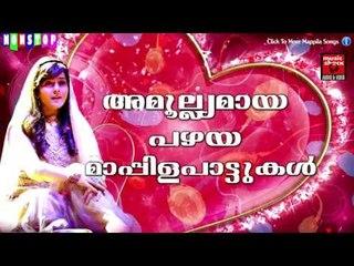 അമൂല്യമായ പഴയ മാപ്പിള പാട്ടുകൾ | Old Is Gold Malayalam Mappila Songs | Pazhaya Mappila Pattukal
