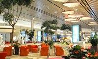 Bandara Changi Buka Terminal Baru Serba Otomatis