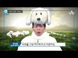 """정이랑이 전하는 """"청와대 진돗개 이야기""""_채널A_뉴스TOP10"""
