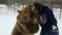 Jouer dans la neige.. avec 2 gros OURS bruns !!