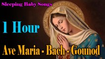 Sleeping Baby Songs - Ave Maria - Bach - Gounod - Lullaby to Put a Baby to Sleep - 1 HOUR