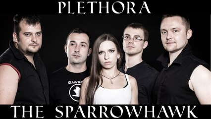 Plethora - VI. THE SPARROWHAWK  (from Age of CHANGES album)