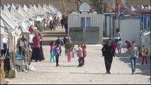 Grupos europeus não protegem refugiados