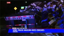 Semi-Truck Carrying Millions of Bees Crashes in Northern California