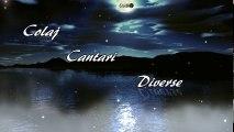 Colaj Cantari Crestine Diverse 2 - Muzica crestina pentru inima ta (2018)