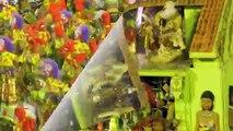 Carnaval Rio de Janeiro - Desfile Campeã new Unidos da Tijuca - Carnival in Rio champion - HD