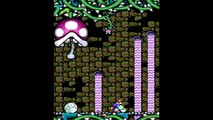 Yoshis Island DS - ALL Bosses (No Damage)