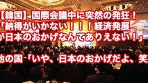 【韓国】国際会議中に突然の発狂!「納得がいかない!!!経済発展が日本のおかげなんてありえない!」他の国「いや、日本のおかげだよ、笑」