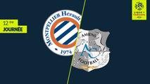 Montpellier Hérault SC - Amiens SC (1-1)  (MHSC )