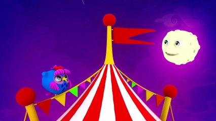 Nara Leão - O Circo