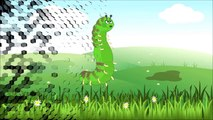 La comunidad de los insectos - Aprendamos sobre insectos (Video para niños)