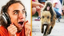 REACTING TO THE MOST WTF GIFS ON THE INTERNET!
