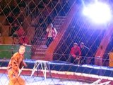 LION VS TRAINER FIGHT ,LION ATTACKED ON HIS TRAINER DURING CIRCUS SHOW