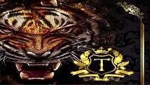 El Tigre Ciclon 34 (Grupo de los Ciclones) (Matamoros Tamaulipas) (2017)(Video)