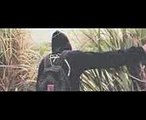 Alan Walker - I Wish feat. Sia (Official Video) (1)