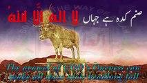 kalam, Hadhrat Sultan Bahoo R.A & Allama Muhammad Iqbal R.A