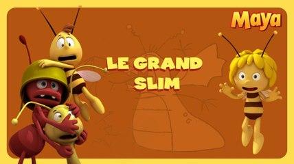 Maya l'abeille - le grand slim