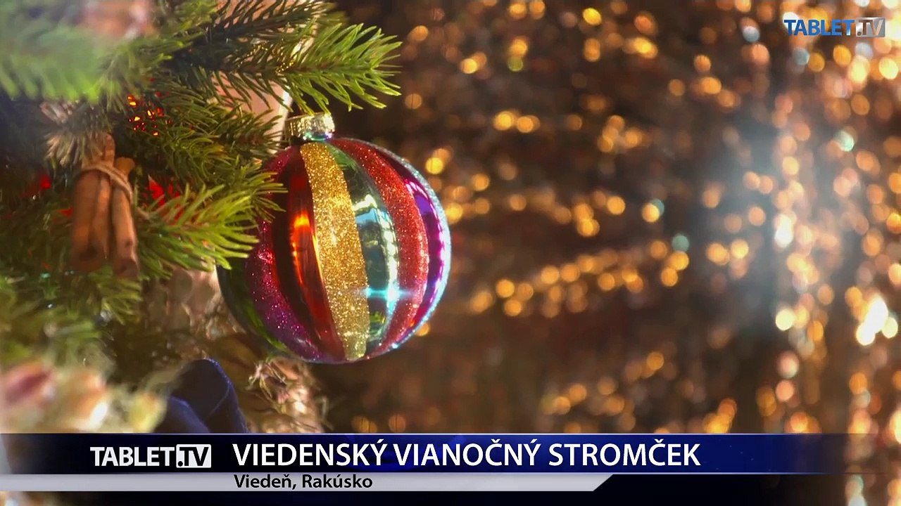 VIEDEŇ: Na Radničnom námestí postavili vianočný stromček, trhy otvoria 18. novembra