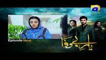 Yaar e Bewafa - Episode 20 Teaser Promo | Har Pal Geo