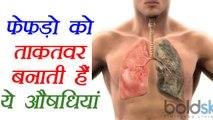 Lungs Health: Herbs for healthy lungs | स्वस्थय फेफड़ों के लिए जड़ीबूटियां | Boldsky