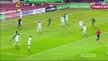 Algérie 1-1 Nigéria : les buts de la rencontre
